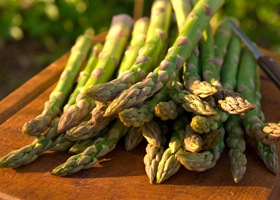 Asparagus feature