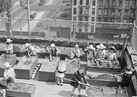 Community Garden History