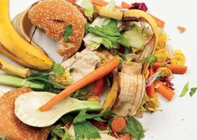 Food Waste Thumbnail
