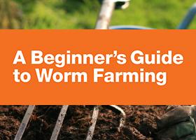 Thumbnail worm farm