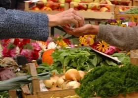 FEATURE ARTICLE FarmersMarkets