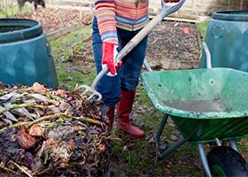 Kitchen Waste Compost