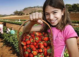 Strawberry_Girl THUMBNAIL